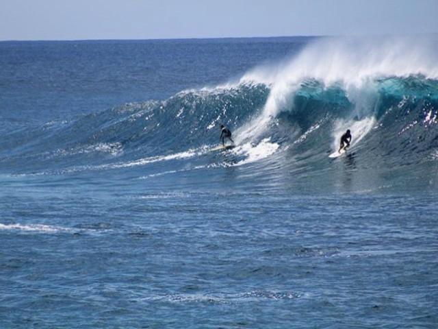 SurfRobertoAraki_COCH